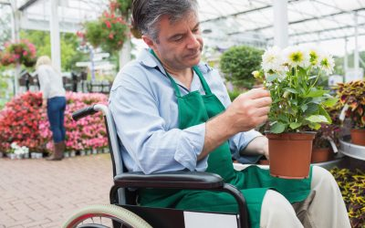 Supporting our clients with Multiple Sclerosis